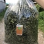 หญ้าหวานอบแห้ง 100% (กิโล) thumbnail 7