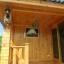 บ้านไม้สน ขนาด 3*5.5 เมตร (1 ห้องนอน 1 ห้องน้ำ) thumbnail 2