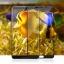 Huawei Mate 10 Pro (เต็มจอ/กาวเต็ม) - กระจกนิรภัย P-One FULL FRAME แท้ thumbnail 6