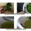 ที่บด คั้นผักผลไม้ทำจากสแตนเลสคุณภาพดีนะคะ thumbnail 4