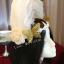 MAI16 มงกุฎขนนกขาว ผี้เสื้อทอง (งาน handmade)**สินค้ามีจำกัด** thumbnail 7