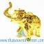 ของพรีเมี่ยม ของที่ระลึกไทย ช้าง แบบ 7 Size S สีทอง thumbnail 2