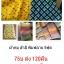 ผ้าห่มสำลี หนา พิมพ์ลาย 5ฟุต 500กรัม ผืนละ 75บ ส่ง 120ผืน thumbnail 1