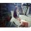 เดรสสั้นเกาหลี คอกลม ลาย V ที่ตัวเสื้อ แขนเสื้อตัดเย็บพองๆ เพิ่มความเลิศหรูให้กับสาวๆ ดีทีเดียว thumbnail 7