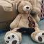 ตุ๊กตาหมีสก็อตต์ Scott Bear ไซส์ 1.6 เมตร thumbnail 4